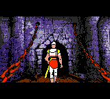 Dragon's Lair (USA) (En,Ja,Fr,De,Es,Zh) In game screenshot