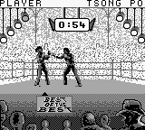 Best of the Best - Championship Karate (Europe) In game screenshot