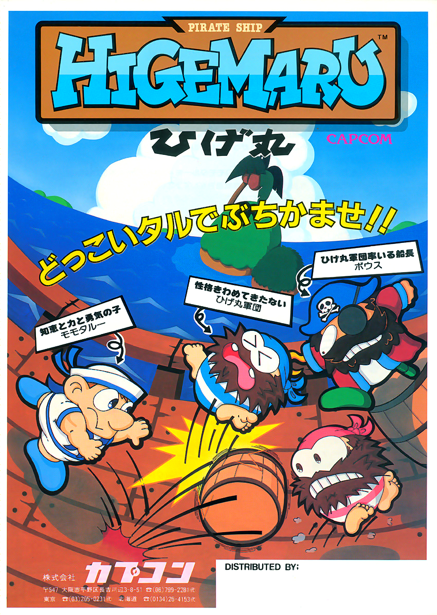 Pirate Ship Higemaru flyer