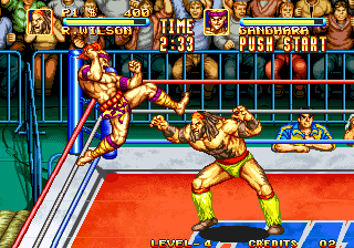 3 Count Bout / Fire Suplex Screenshot