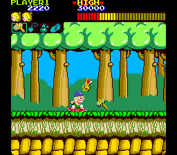 Wonder Boy (set 2, not encrypted) Screenshot