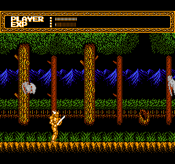 Sword Master (USA) In game screenshot