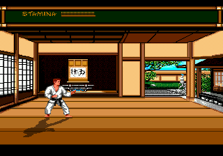 Budokan - The Martial Spirit (Europe) In game screenshot