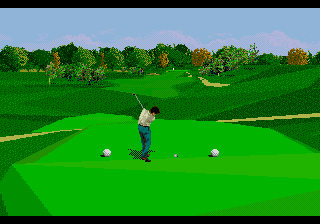 PGA Tour 96 (USA, Europe) In game screenshot
