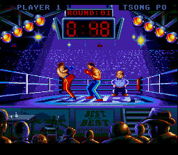 Best of the Best - Championship Karate (USA) In game screenshot