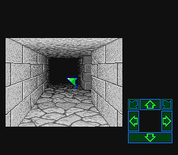 Dungeon Master (USA) In game screenshot
