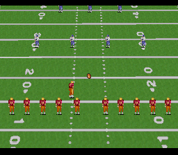 Emmitt Smith Football (USA) In game screenshot