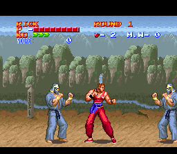 Ultimate Fighter (USA) In game screenshot