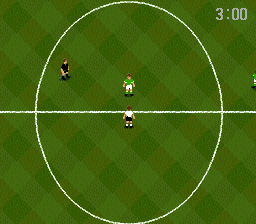 World Cup USA '94 (USA) In game screenshot