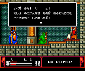 Cadash (Japan) Screenshot 1