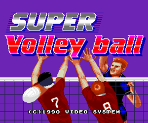 Super Volleyball (Japan) Screenshot