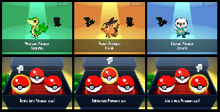 Screenshot Thumbnail / Media File 1 for Pokemon - Schwarze Edition (DSi Enhanced) (G)