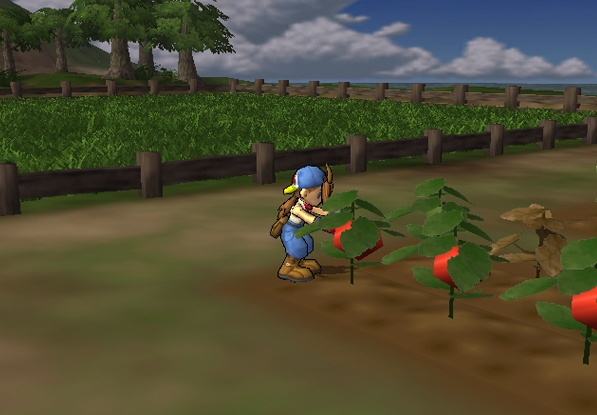 Game Harvest Moon Windows 7
