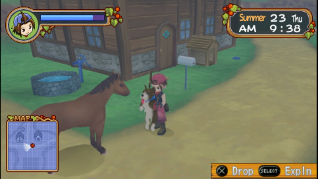 cheat harvest moon boy and girl ppsspp di android