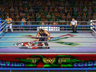 Screenshot Thumbnail / Media File 1 for Champion Wrestler (Japan)