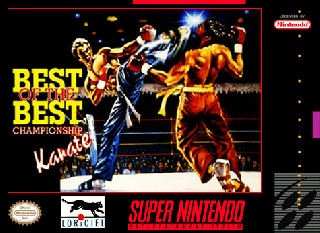 Screenshot Thumbnail / Media File 1 for Best of the Best - Championship Karate (Europe) (Beta)