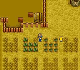 Harvest Moon (USA) ROM < SNES ROMs | Emuparadise