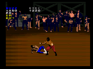 Screenshot Thumbnail / Media File 1 for Pit-Fighter (Europe)