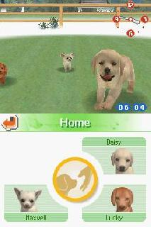 Screenshot Thumbnail / Media File 1 for Nintendogs - Chihuahua & Friends (U)(Lube)