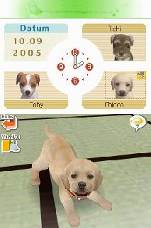 Screenshot Thumbnail / Media File 1 for Nintendogs - Dachshund & Friends (E)(Trashman)