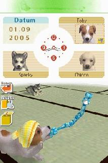 Screenshot Thumbnail / Media File 1 for Nintendogs - Chihuahua & Friends (K)(Independent)