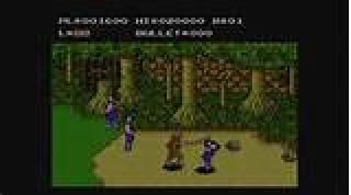 Screenshot Thumbnail / Media File 1 for Adventures of Bayou Billy, The (Europe)