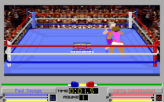 Screenshot Thumbnail / Media File 1 for 4d Boxing (1991)(Mindscape Inc)(Rev1)