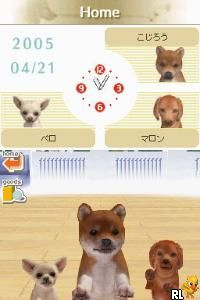 Nintendogs - Shiba & Friends (J)(ProjectG) Screen Shot