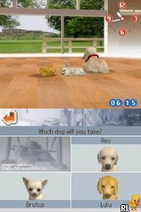 Nintendogs - Chihuahua & Friends (U)(Lube) Screen Shot