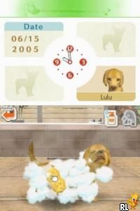 Nintendogs - Chihuahua & Friends (E)(Trashman) Screen Shot
