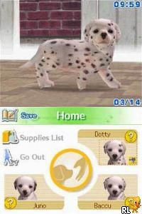 Nintendogs - Dalmatian & Friends (U)(Supremacy) Screen Shot