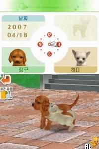 Nintendogs - Chihuahua & Friends (K)(Independent) Screen Shot