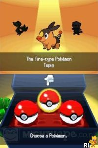 Pokemon - Black Version (DSi Enhanced)(USA) (E) Screen Shot